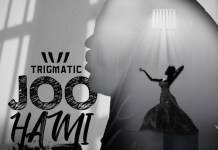 Trigmatic - Joo Hami