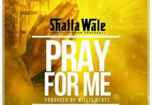 Shatta Wale - Pray For Me (Prod. by WillisBeatz)