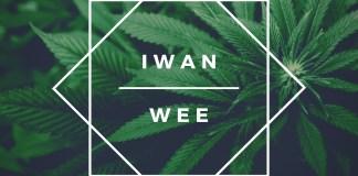 IWAN - Wee