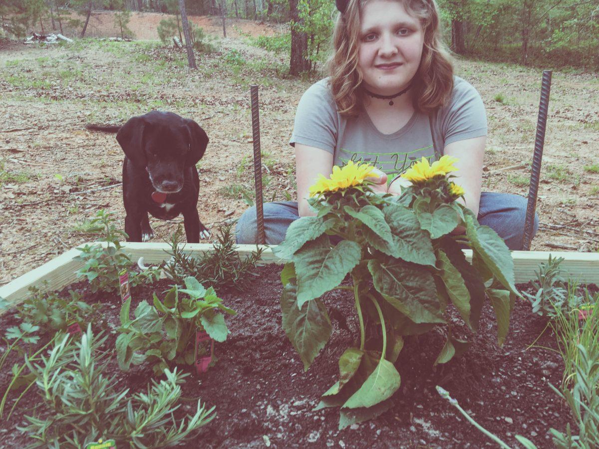 easy outdoor herb garden