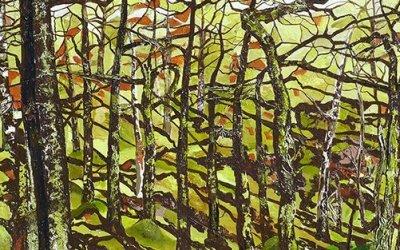Liz Green | In the Woods