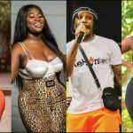 "Wendy Shay, Sista Afia, Kelvynboy And Others React to Fella Makafui's New Banger ""No Size"" (+Screenshot)"