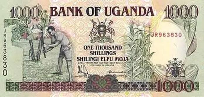 10 Weakest Currencies In Africa & Their Exchange Rates 2021. 70