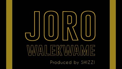 Photo of Wale Kwame – Joro (Prod. by Shizzi)