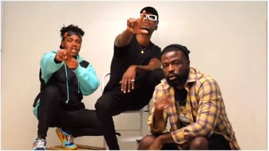 Photo of E.L – Change My Story Ft Kwame Dame & Dr.Laylow(Official Video)