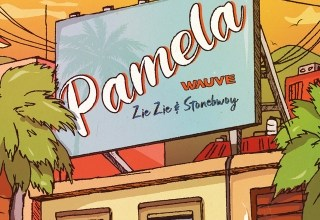 Photo of Wauve – Pamela Ft Stonebwoy x ZieZie
