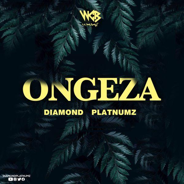 Diamond Platnumz - Ongeza (Prod. by Lizer Classic)