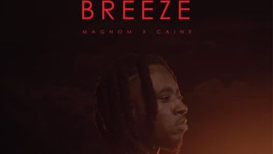 Photo of Magnom ft Caine – Tropical Breeze