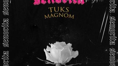 Photo of Magnom x Tuks – Señorita MP3 Download