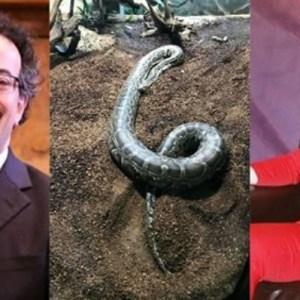 Jon Benjamin Trolls Angel Obinim; Says He Saw Him At The Zoo