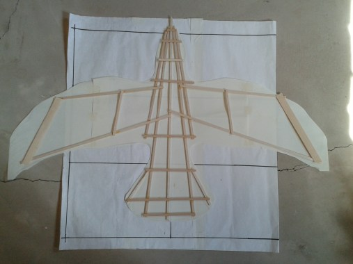 Kite like framework of crow