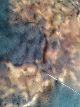 Texturing sumac heads