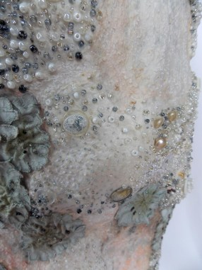 "detail showing ""lichens"" and ""crystals"""