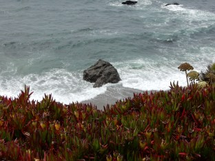Looking down the cliff to the Carmet coastline.