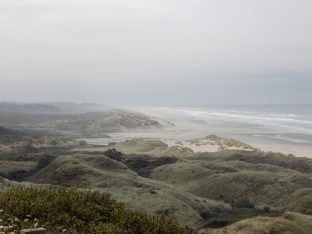 A look south along the coast north of Florence, OR.