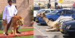25 Pictures That Prove Dubai Is The 'Craziest' City In The World – Guys Spend Money Like It's Water