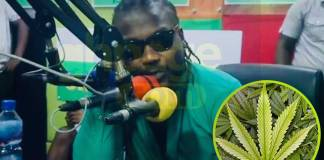 Samini begs to be given license to grow weed