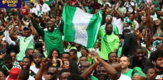 20-30% Nigerians are mentally ill - Nigerian Government declares