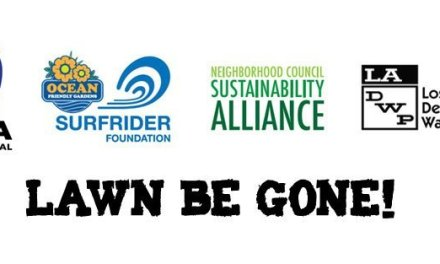 Host or participate in a LADWP Lawn Be Gone Hands On Workshop