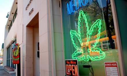 Upcoming City Council Committee Hearings on Cannabis/Marijuana