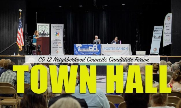 CD 12 Neighborhood Councils Candidate Town Hall Video – July 20, 2019