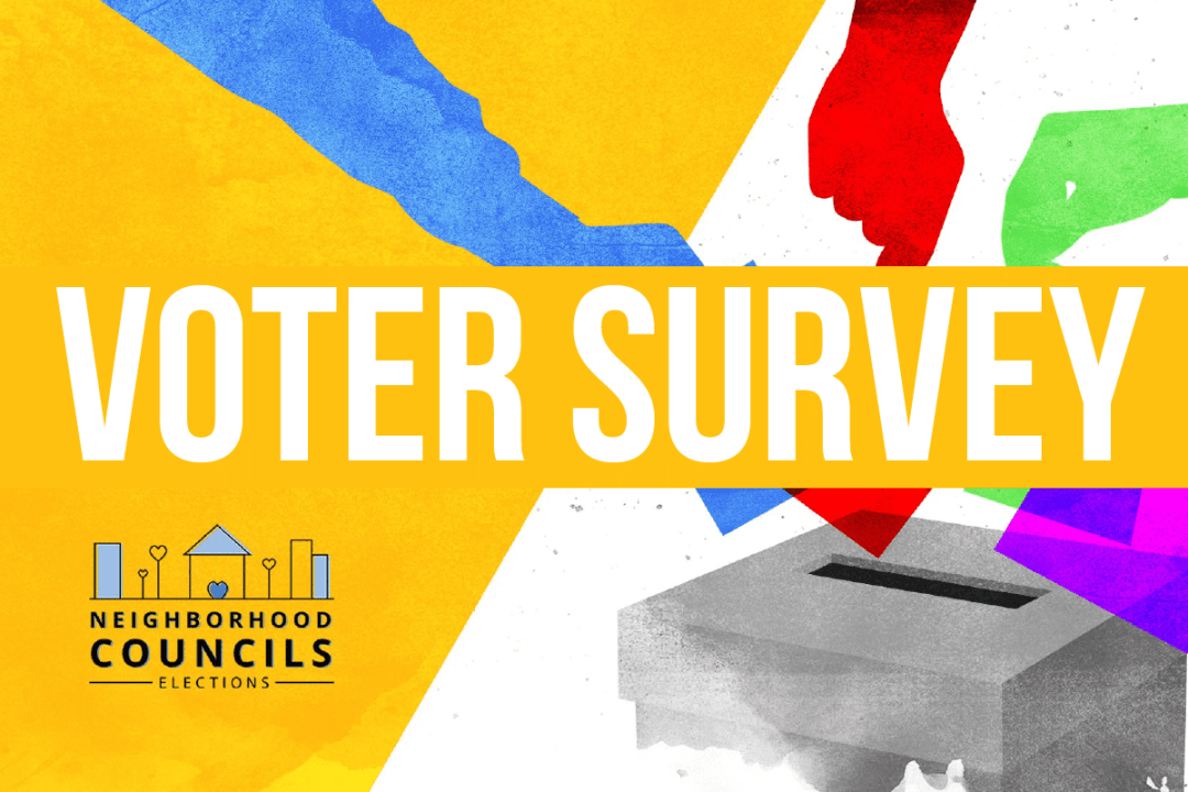 Voter Survey for NC Elections 2019