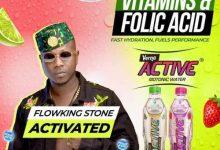 Photo of Flowking Stone – Verna Active