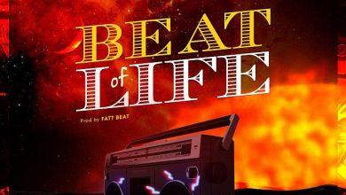 Photo of [Music] Unipulse – Beat Of Life