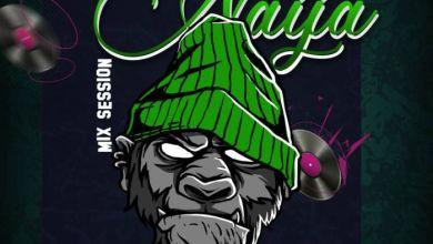 Photo of [Mixtape] DJ Hazan – Ease Off Naija Mix