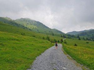 Monte Farno Valgandino - Sentiero