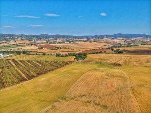 colline pisane lorenzana