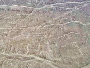 Linee di Nazca - Scimmia