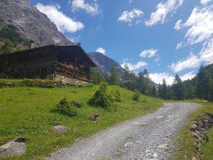 Gita al Rifugio Campo in Val Zebrù