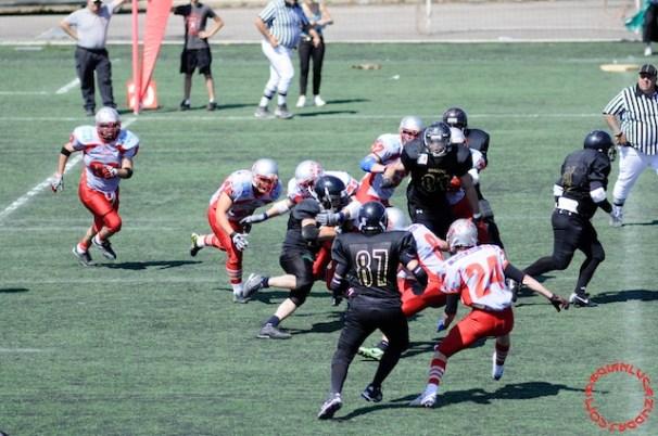 Crusaders Cagliari vs Dragons Salento, 48-0, 29 maggio 2011 327