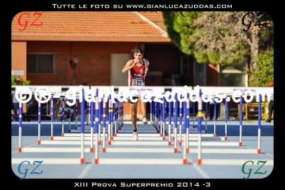 XIII Prova Superpremio 2014 -3
