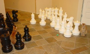 Oscar and Felix admire the giant chess game