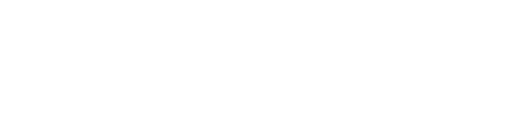 Lake Superior Consulting