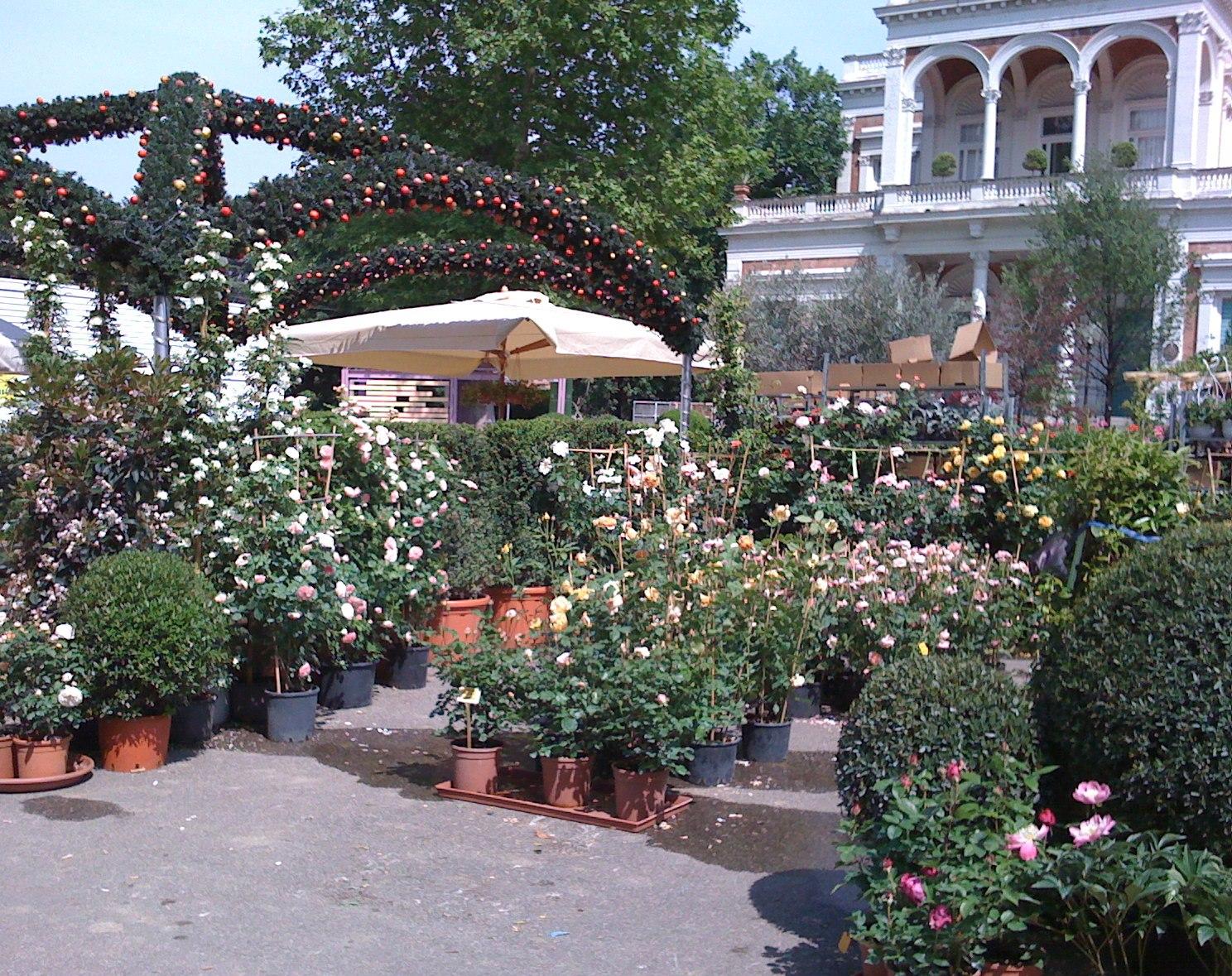 Mostra mercato piante fiori ed arredi artigianato for Giardini sui terrazzi