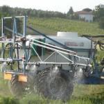 Fertilizzante: perché usare il potassio