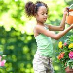 Il giardino ecosostenibile: suggerimenti