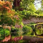 Il giardino all'inglese
