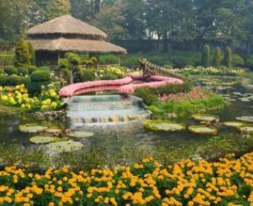 Suzhou, un angolo del Giardino dell'Amministratore Umile, uno dei massimi esempi di giardino cinese. Ad allestirlo fu un burocrate della dinastia dei Ming, Wang Xianchen, che decise di creare, nei primi anni del Cinquecento, un luogo ameno dove trascorrere la vecchiaia (foto Robert Harding Picture Library Ltd / Alamy)