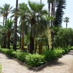 Alla scoperta dei giardini di Palermo: villa Giulia