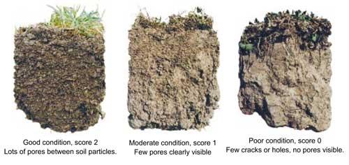 mantenere acqua nel terreno