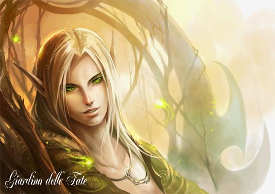 Gli Elfi
