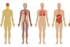 Ασθένειες & συμπτώματα (Αλφαβητικά)  Αναζητείστε μία ασθένεια επιλέγοντας ένα αρχικό γράμμα από τον παραπάνω πίνακα. Εναλλακτικά μπορείτε να αναζητήσετε την ασθένεια που σας ενδιαφέρει .