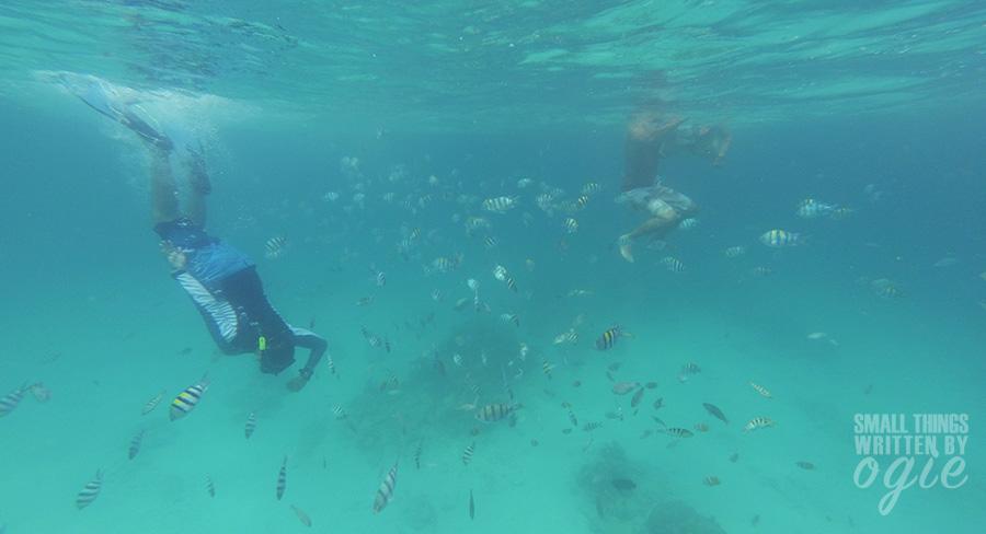 liburan-hemat-ke-lombok10