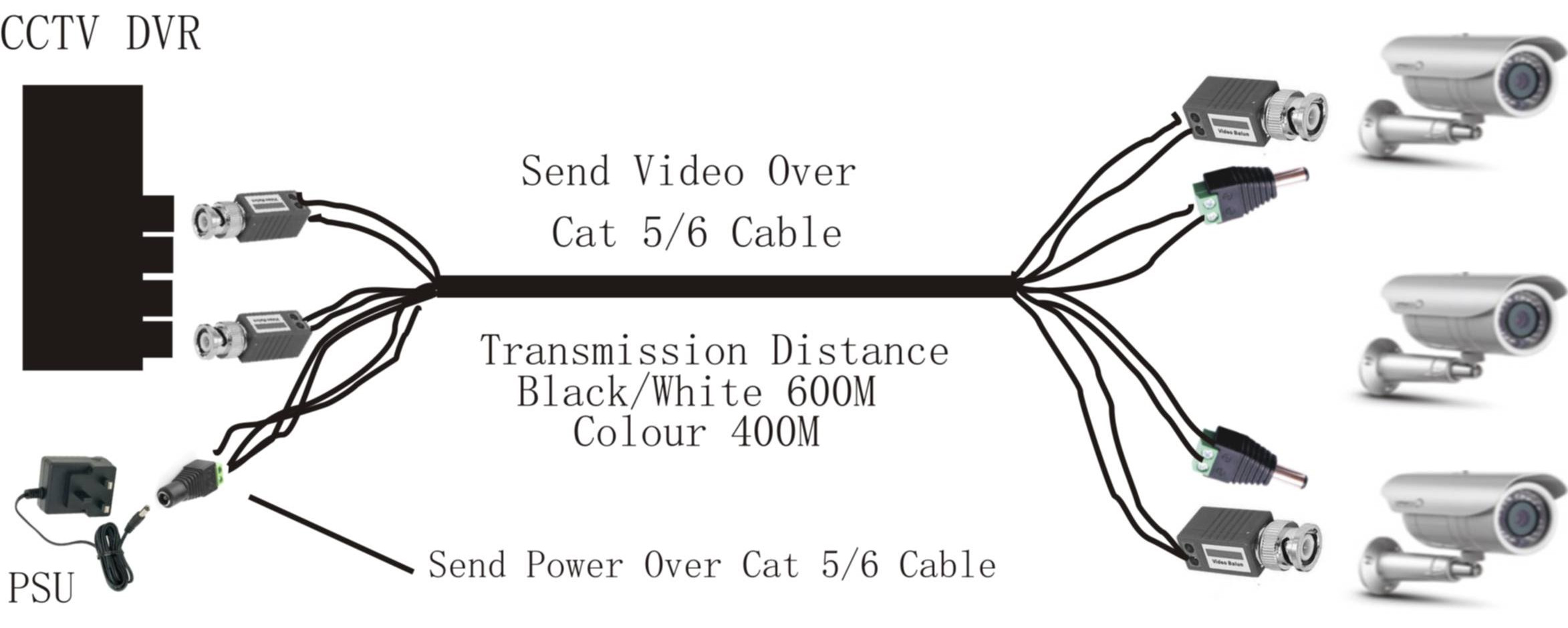 Cat5 Male End Wiring