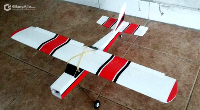 RC Plane Mini Cessna 182 Homemade