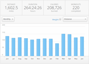 12 month view 30-06-2015
